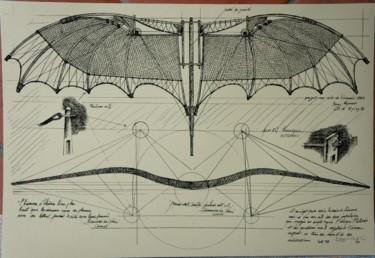 16,1x23,6 in © par Serge & Claudia Reynaud-Marchesin (Art of Flying)